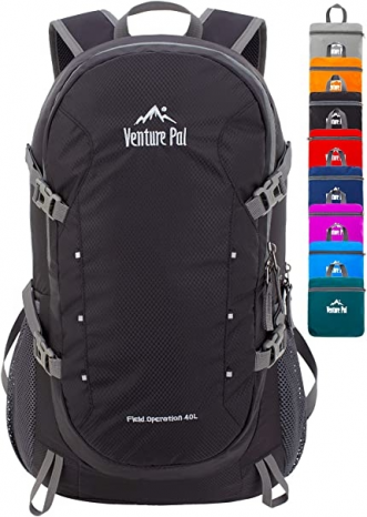 Featured image for: Venture Pal Backpack Review